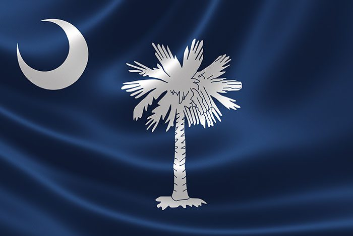 How Much Does South Carolina Car Insurance Cost